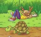 Cuento de la tortuga y la liebre