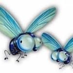 Cuento las moscas